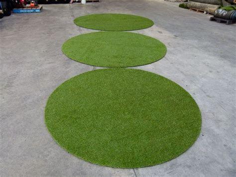 grass rug grass rug office zoeken webr rooseveltweg grasses courtyard ideas and