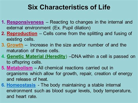 characteristics of biography organization of the human body ppt video online download