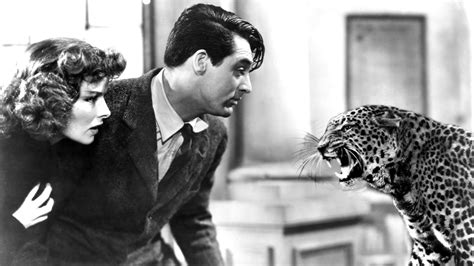 film bringing up baby movie review bringing up baby 1938 alex kittle