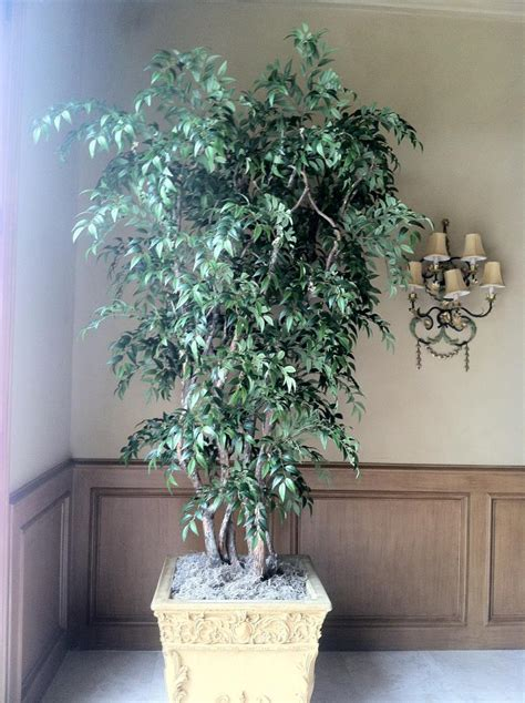 fake plants for home decor artificial trees and artificial plants from artificial