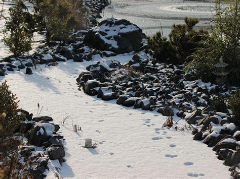 japangarten verden japangarten verden im winter