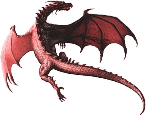 google images dragons dragon flying google search tattoos pinterest