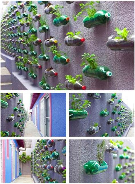 Recycling Ideas Garden Reuse Plastic Bottles In Your Garden Creatively