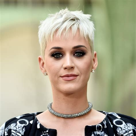 katy perry facts biography katy perry songwriter singer biography