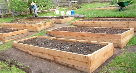 Raised Bed Garden Soil Depth by Raised Beds Soil Depth Requirements