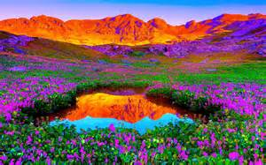 colorful mountains colorful mountain and flowers 40 pieces jigsaw puzzle