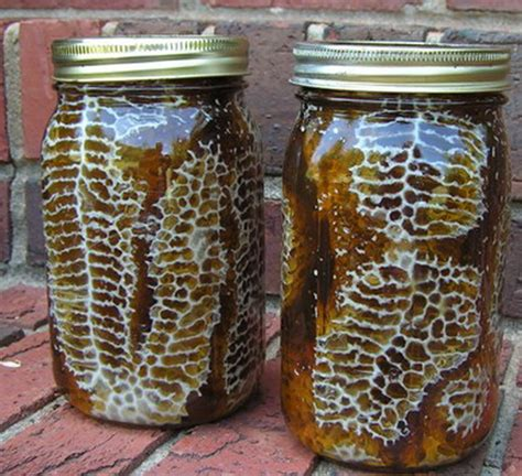 backyard honey diy beehive in a jar fresh honey in your backyard mrs