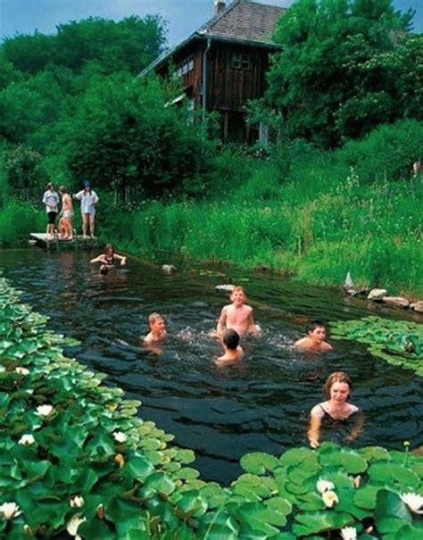natural backyard pools 17 natural swimming pools you wish were in your backyard