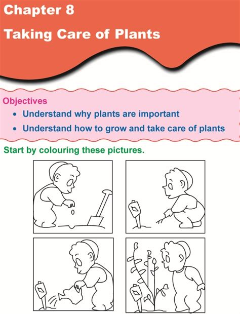 science worksheets grade 1 grade 1 science lesson 8 taking care of plants primary