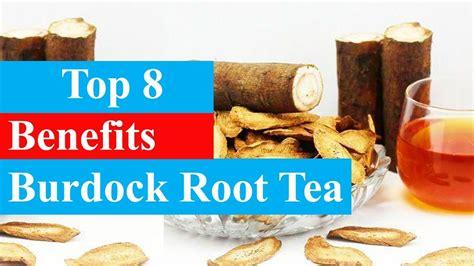 Burdock Root Detox Tea by Burdock Root Tea Recipe Besto