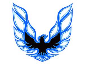 Decal kit blue trans am 78