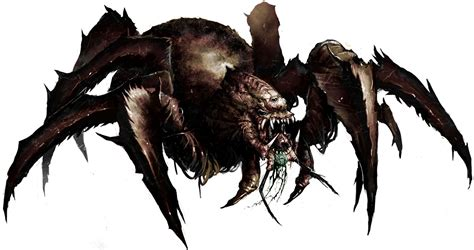 Spider Search Pathfinder Spider Search Arachnids Lost Illusions And