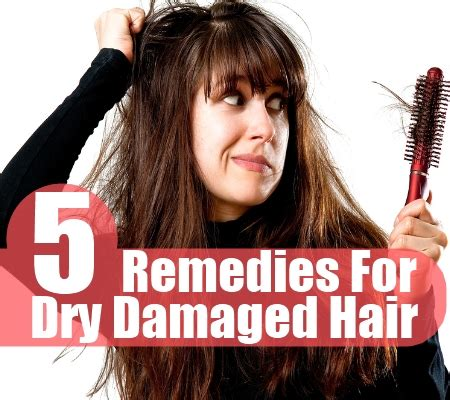 hair conditioner for dry hair over 60 treatment for dry hair over 60 causes signs and analysis