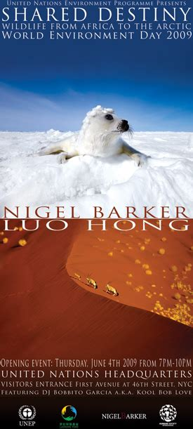 Nigel Barkers Saving Baby Seals While Waiting For His Own by Wfl Endangered Live Nigel Barker