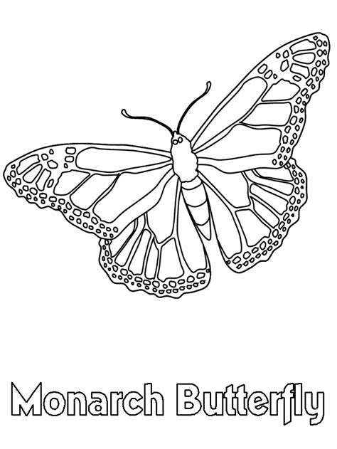 monarch butterfly coloring book page coloring home