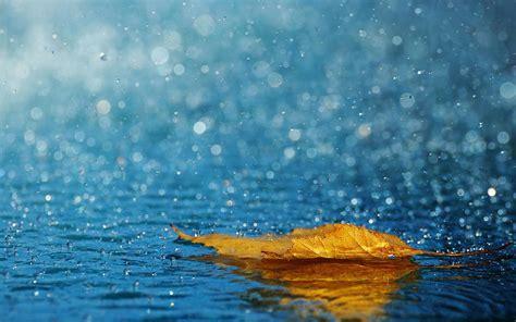 cute rain hd wallpaper rain wallpapers hd wallpaper cave