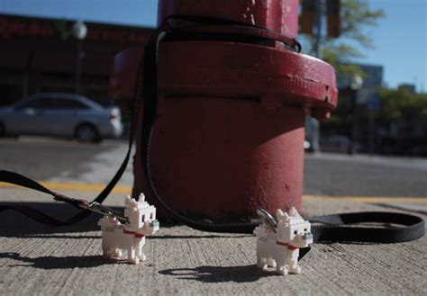 Lego Nanoblock Loki mini animaux dans la rue paperblog
