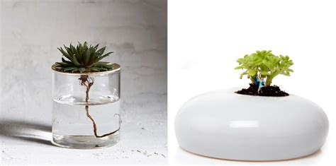 cool planters six eye catching planters cool hunting
