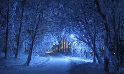 winter night blue  photo  pixabay