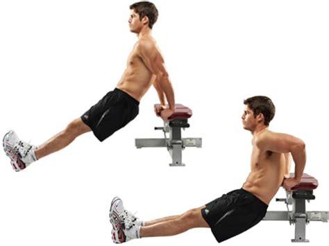 esercizi per tonificare interno braccia 5 esercizi braccia forti e scolpite myprotein