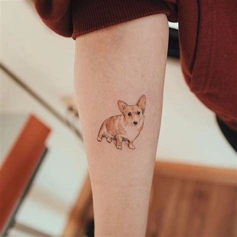 corgi tattoo designs 25 best ideas about corgi on how do