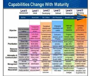 gartner it maturity model with different attributes of it