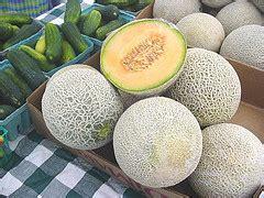 Melon Detox Pdf by Cura Depurativa Mel 243 N Para Adelgazar Beneficios