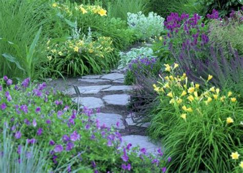 artistic perennial combinations landscape ontario com green for life