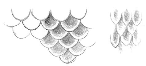 draw to scale how to draw and paint mermaid scales impact books