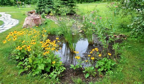 pictures of a garden i never promised you a rain garden sailorstales