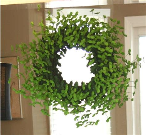 shamrock decorations home shamrock wreath how do i make this container