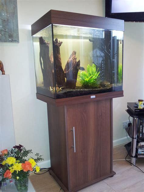 Koi Fish Tank Size – Backyard fish pond ideas, portable patio ponds patio pond
