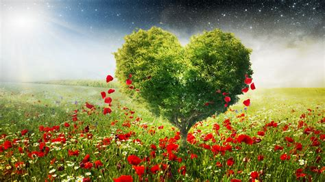 love tree wallpaper gallery