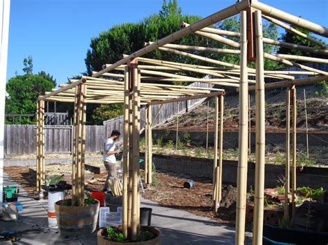 Arbor Search How To Make A Bamboo Arbor Search Garden