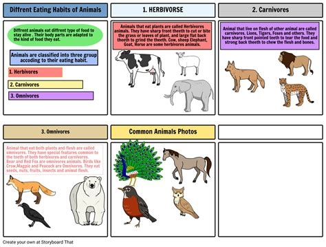 Food And Feeding Habits Of Animals Worksheets different habits of animals storyboard by arti123456