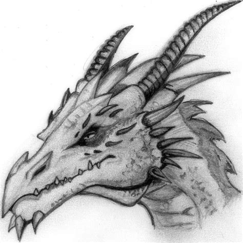 7 best drawing images on pinterest dragon drawings