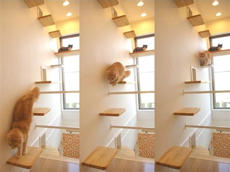 design works home is where the cat is the ultimate cat house