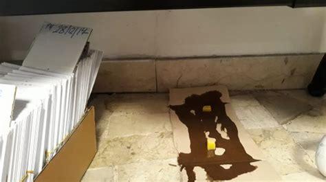ufficio anagrafe di palermo topi negli uffici dell anagrafe di viale lazio a palermo