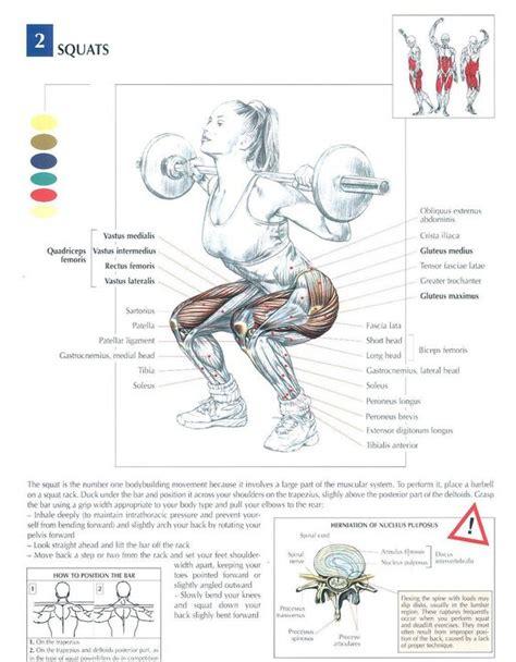 leg workout diagram squats health fitness exercises diagrams