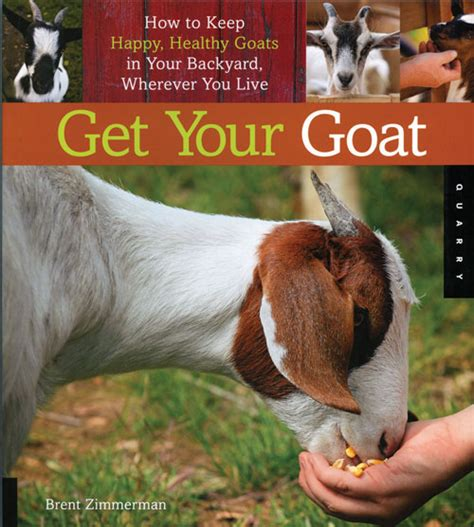 backyard goat farming raising goats on a backyard farm modern homesteading mother earth news