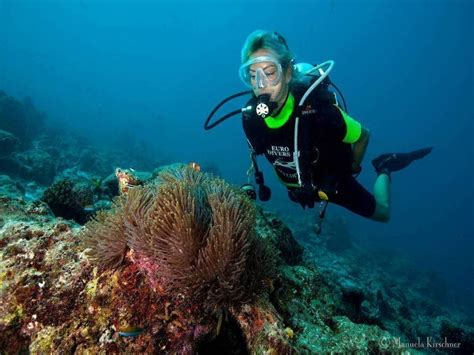 dive maldives diving in maldives thailand oman japan spain croatia