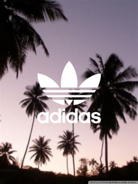 adidas palm trees background ultra hd desktop background