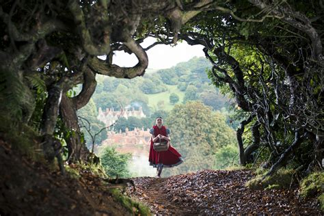 into the woods why into the woods makes a magnificent