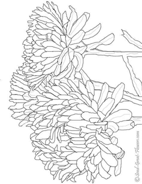 coloring pages of fall flowers fall coloring pages coloring pages and coloring on