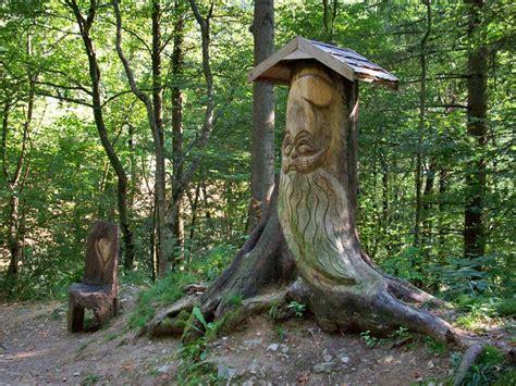 percorso gnomi bagno di romagna italian botanical heritage 187 bosco dell armina