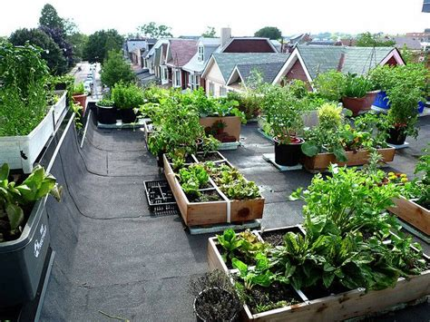 17 Best Images About Urban Garden Roof Top Vegetable Rooftop Vegetable Garden