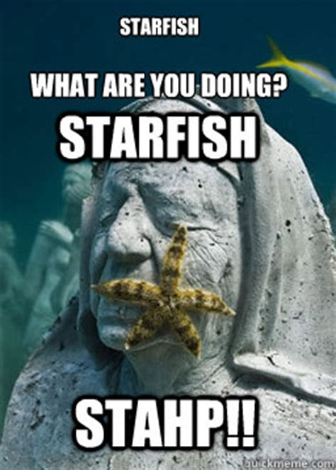 Starfish Meme - starfish what are you doing starfish stahp starfish