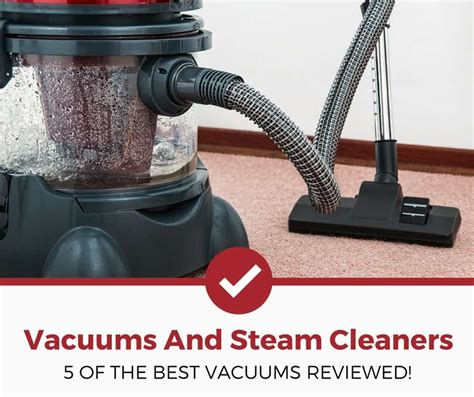 best steamer for bed bugs 5 best bed bug vacuums steamers 2018 edition pest