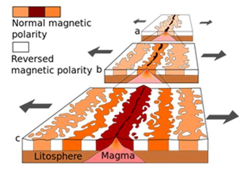 pattern of magnetic polarity reversal seafloor spreading theory definition video lesson