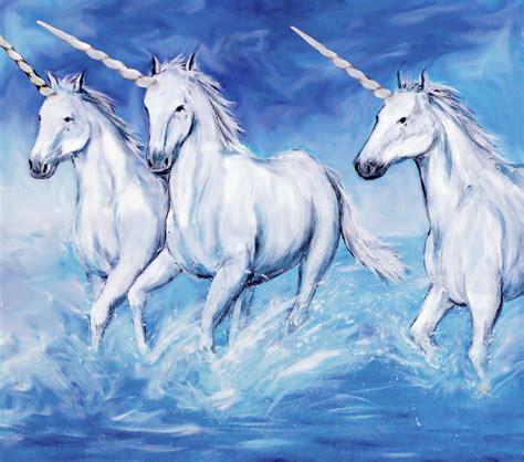 unicorn images unicorn nonprofit af